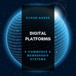 Digital Platform Design