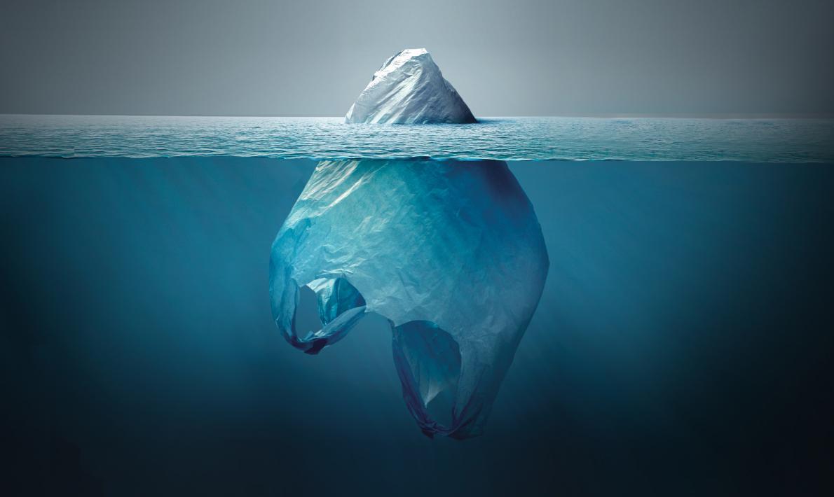 Plastics Pose Problems for Marine Life